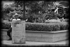 5. Ocak 2013 - 14:36 - Santa Helena, Yucatán, Mèxic