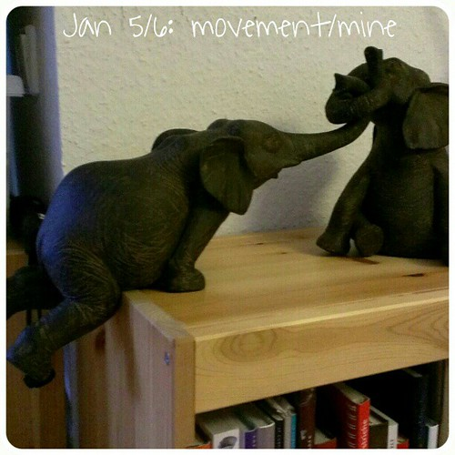 Jan 5/6: movement/mine .. pull my friend! Just love my recent purchase .. #fmsphotoaday #elefant