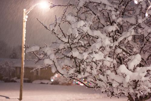 snow1