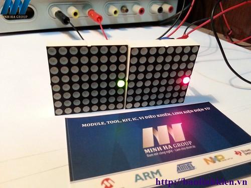 led matrix 2 màu