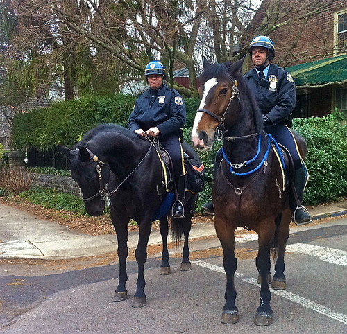 Mounted police return to Philly streets