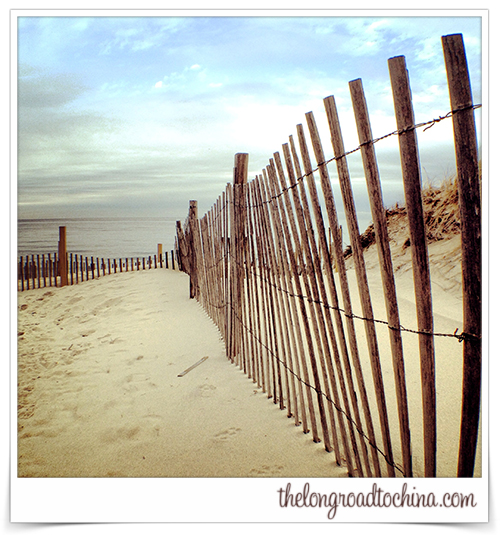 Iphone Beach CC Fence