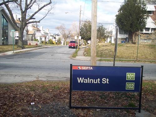 Walnut St