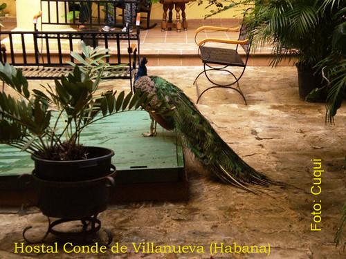 Hostal CondeVillanuevaHabana
