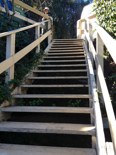 Longest wooden stairs in LA