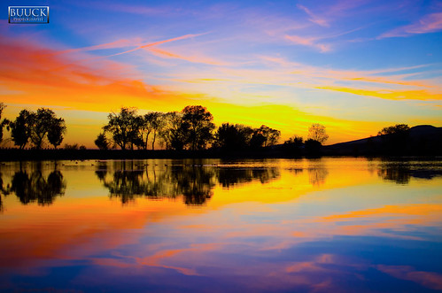 sanfrancisco california ca blue sunset sky lake reflection water colors strange beautiful silhouette clouds painting landscape photography reflecting evening amazing intense colorful pretty fotografie photographie vibrant unique gorgeous awesome fineart perspective scenic surreal story glorious reflect ethereal stunning bayarea norcal unreal walnutcreek incredible fotografi waterscape featherriver fotografía oroville buttecounty عکاسی تصوير фотография forebay buuck nhiếpảnh d7000 potograpiya buuckphotos buuckphotography फ़ोटोग्राफी