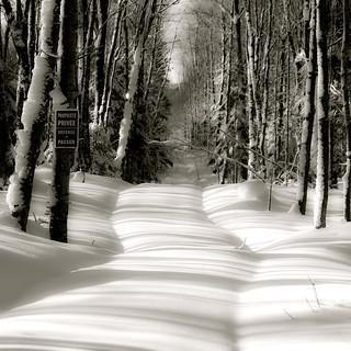 Chemin effacé... barrières d'ombres... je ne peux plus passer...!!!