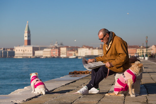 Continental Chic (Man, Newspaper & Dogs), Venice by flatworldsedge