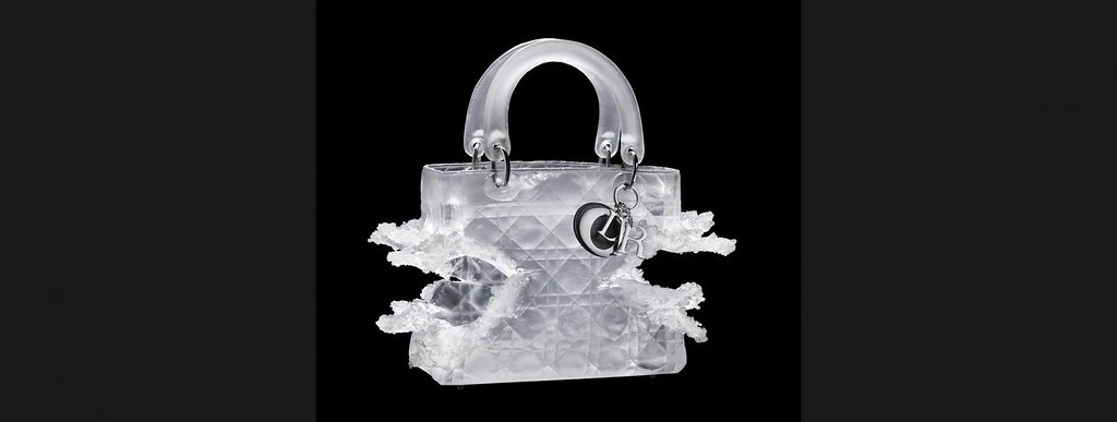 Lady Dior As Seen By Olympia Scarry