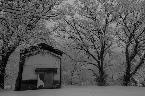 雪の津川 2