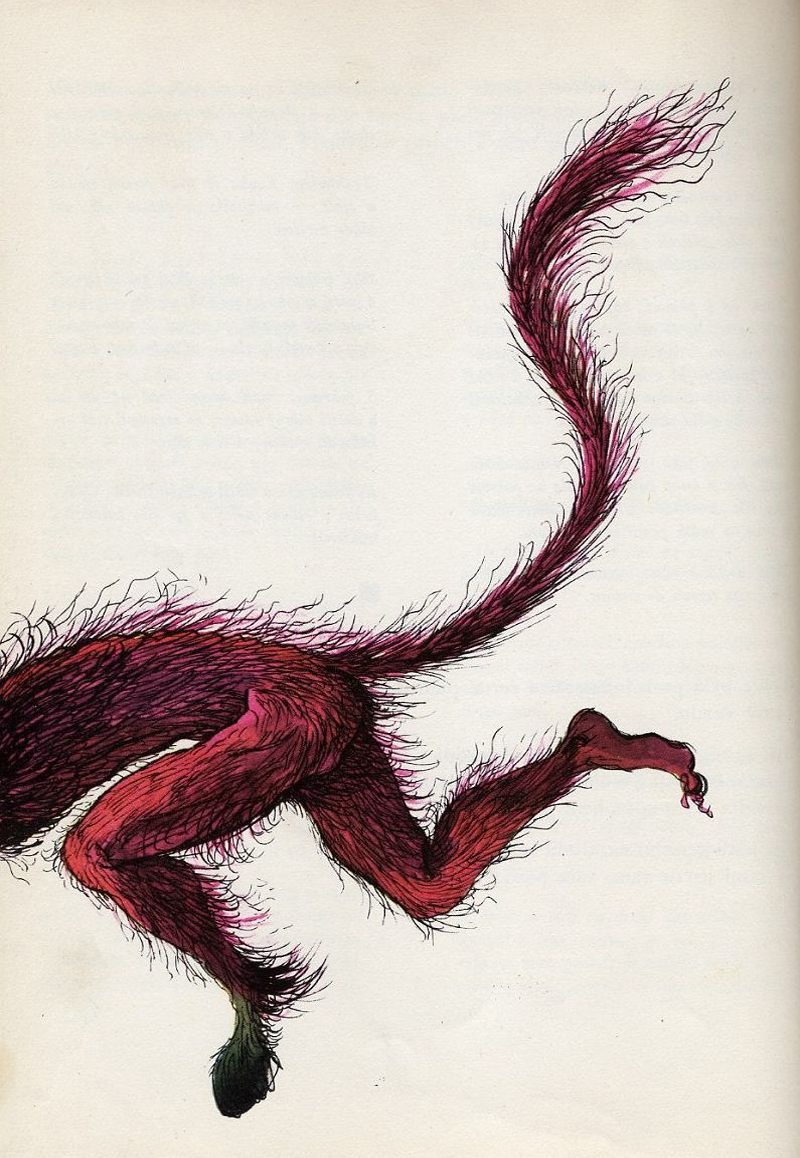Miroslav Váša - Illustrations from The Bugaboos Or Little Natural History Of The Spooks, Ghosts And Phantoms, 1961 (19)