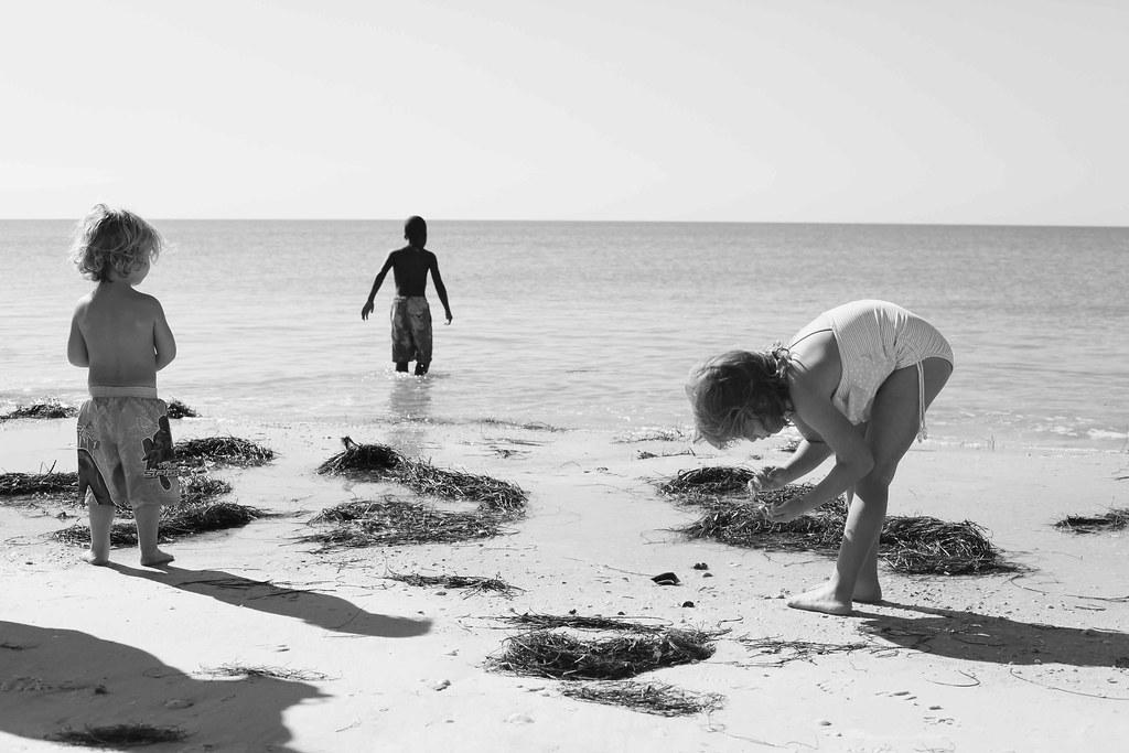 Beach Fun-2