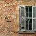 wear tear - window by Georgie Sharp