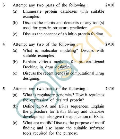 UPTU B.Tech Question Papers -BT-803 - Bioinformatics-III