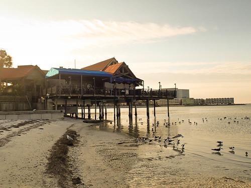 morning light beach sunshine tampa sand tampabay florida olympus tough