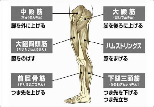 foot-kin-niku