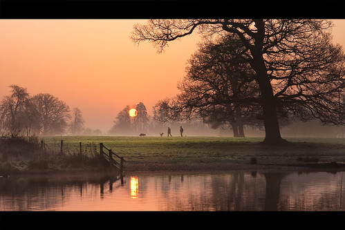 mist lake sunrise dawn slough berkshire kevday langleypark dogwalkers langleycountrypark