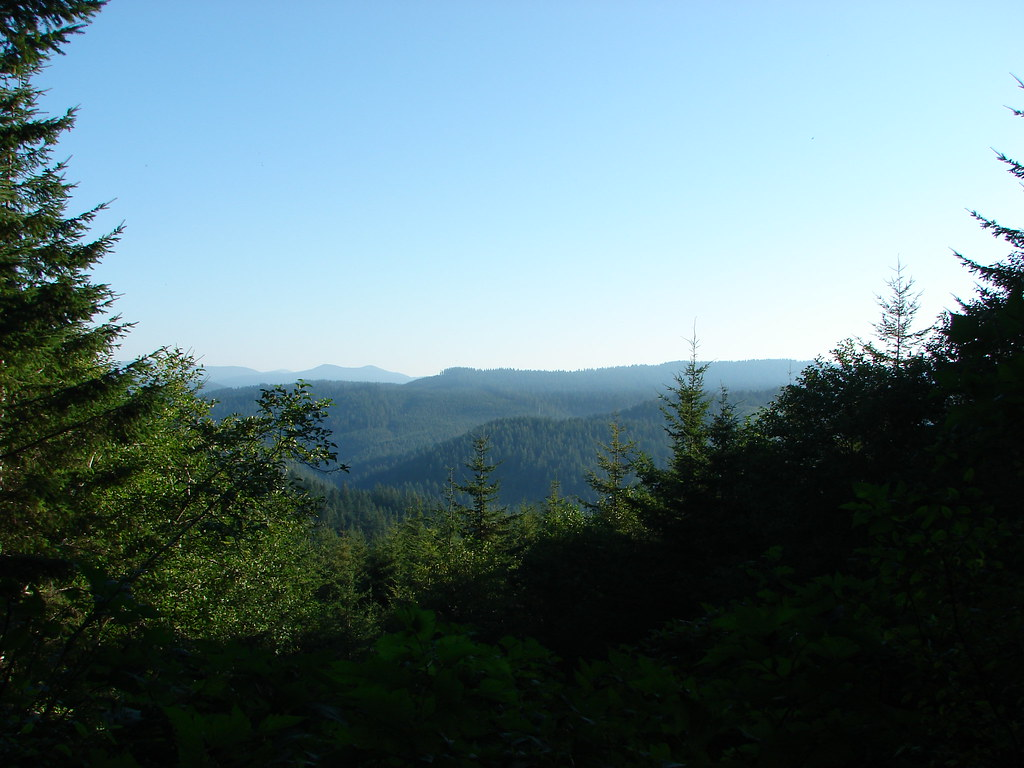 View from Scurvy Ridge