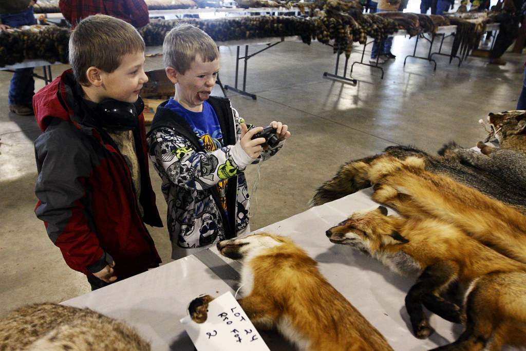 Chad Bittle, 8 watches as Devin Lepper, 7, imitates one of fox skins he is photographing on Saturday, Jan. 28, 2012.  The boys were browsing the animals pelts as they waited to see the Monster Truck Show at the Boone County Fairgrounds.