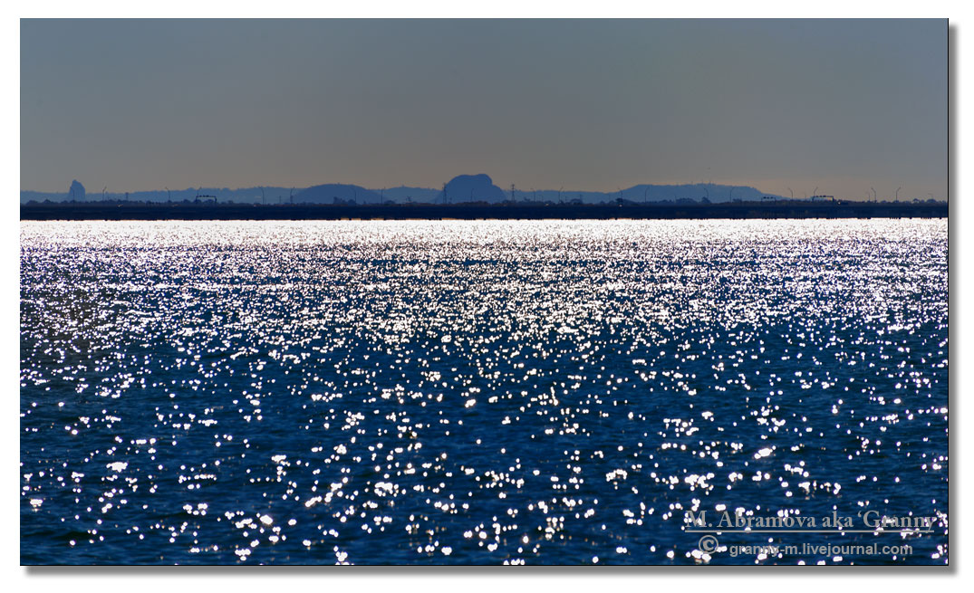 Shorncliffe  2012_06_2_1337