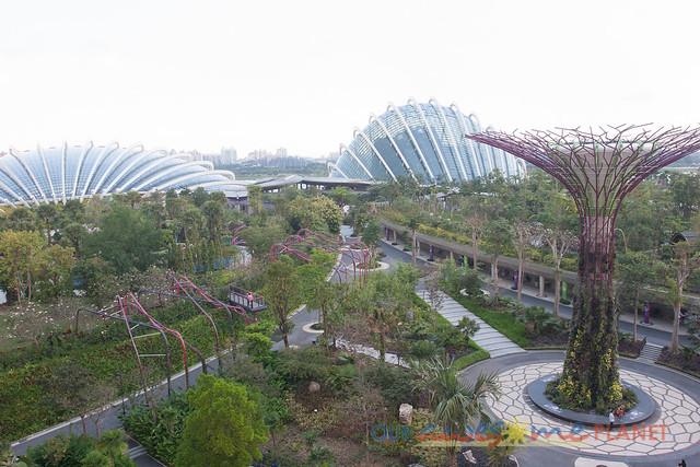 Your Singapore-16.jpg