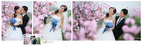 Hoang Phu Viet's Wedding Album