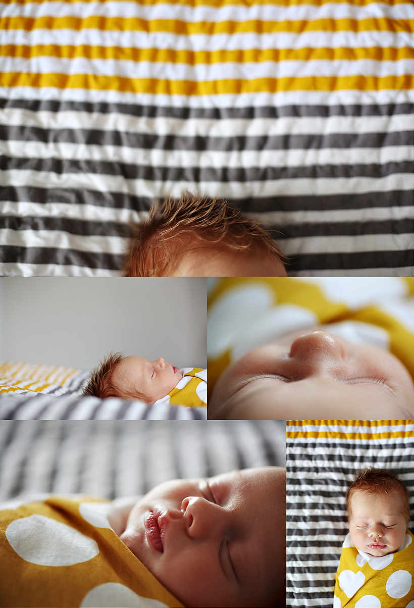 prince george newborn photographer