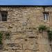 Derbent Wall Homes