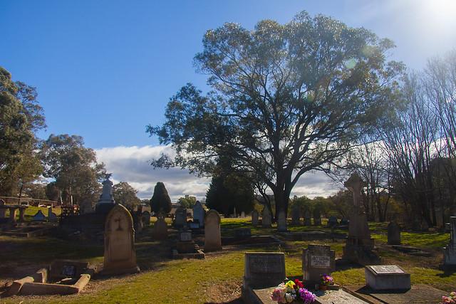 grave sunlight
