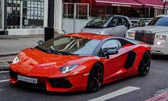 [フリー画像素材] 乗り物・交通, 自動車, ランボルギーニ, ランボルギーニ アヴェンタドール ID:201301100000