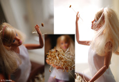 Barbie sprouting seeds