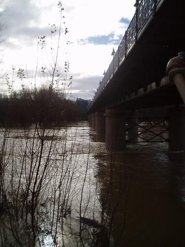 Río Ebro a su paso por Logroño crecida 20 enero 2013