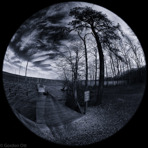 trees sky bw water landscape dock fisheye whatice keepofftheice manasqaunreservoir