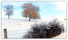 hiver lorrain
