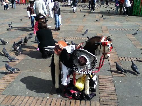 caballito con sombrero mariachi
