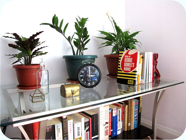 plants, books & vintage clock