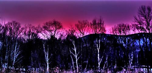 pink blue trees winter clouds sunrise vermont shadows pawlet mygearandme