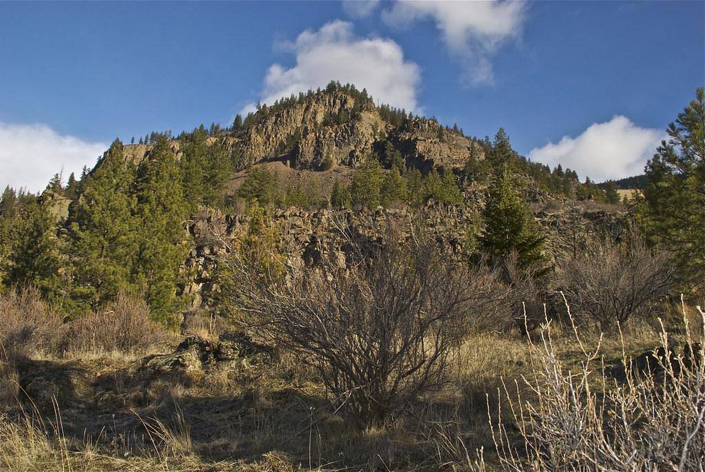 Buttercup Ridge