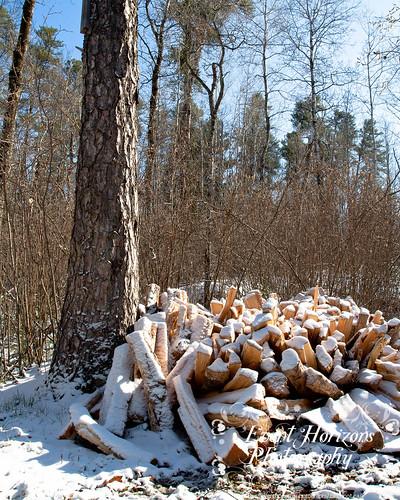 Snowy Wood Pile