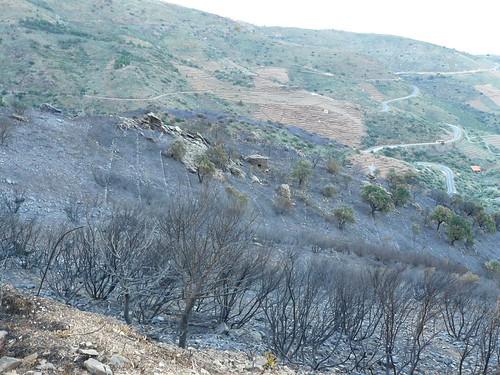 vue du bas, d'où est venu le feu