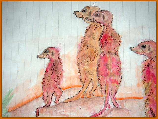 Meerkats and Owls Disegni di topogina, illustrazioni alex bonetto, animali, disegno a mano libera, mixed media, illustrazioni animaletti, cecrisicecrisi.blogspot.it, illustrazione acquerelli, watercolour painting, c'è crisi, c'è crisi blog, Gufo, gufetto, suricato, suricati,