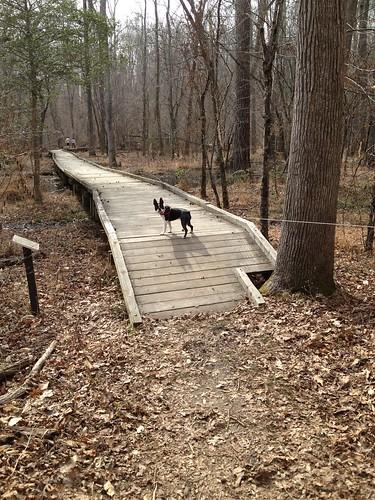 Charlie's First Trip to Poco Feb 2013 (72)