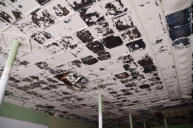 Windows and Ceiling Tile