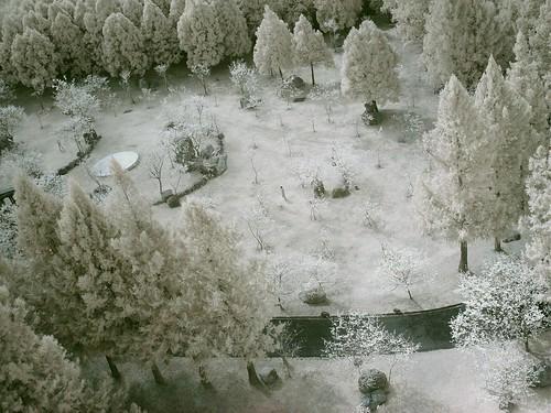 九族-日月潭纜車