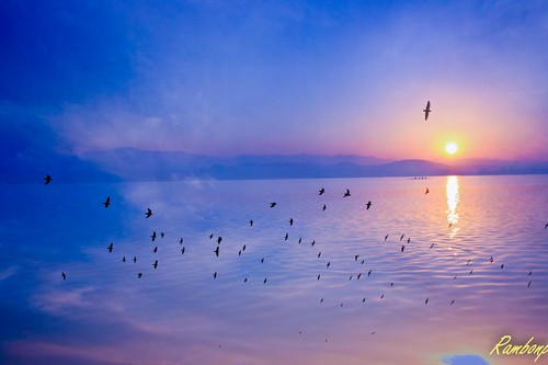 morning trees red wallpaper sky india lake mountains reflection nature water birds silhouette yellow clouds sunrise landscape temple dawn paradise crack at मुँह theinspirationgroup उदयाचल अँधेरे chandigarhsukhna