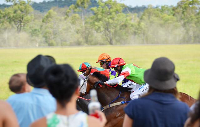 races_7243 e