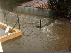 Le ruisseau de Casavecchia bordant la résidence