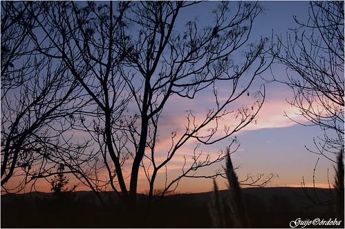 sunset españa atardecer spain nikond70s paisvasco vitoriagasteiz abechuco guijocordoba