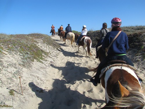 Horseback Riding on Salinas River State Beach