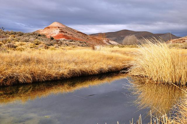estepa cerca de Comallo, Rio Negro